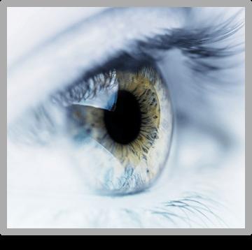 Eye Doctors - Bloom Eye Associates - Philadelphia, PA